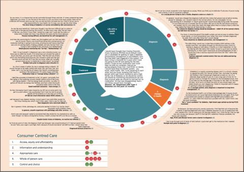Sample Health Experience Wheel